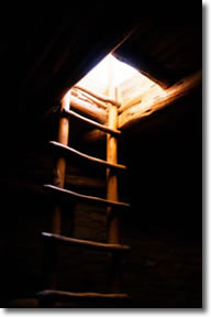 Ladder from darkness to light